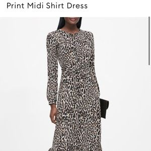 Midi Shirt Dress and Fit and Flare Dress